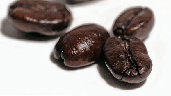 kona coffee grades